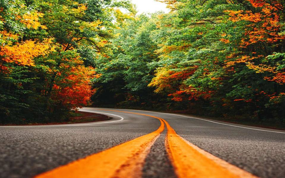 Fixed income outlook: The autumn cluster