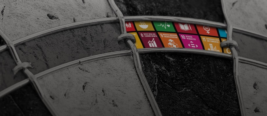 The road ahead for the SDGs