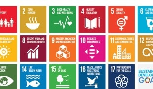 Our introductory guide to investing in SDG credits